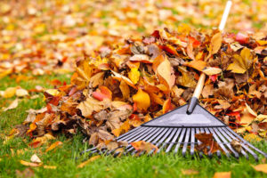 5 Fall Plumbing Tips to Keep in Mind